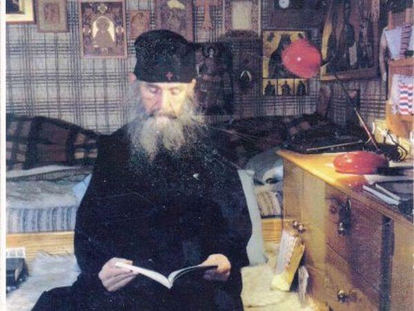 Αποτέλεσμα εικόνας για Γέρων Εφραίμ Φιλοθεϊτης Αριζονίτης