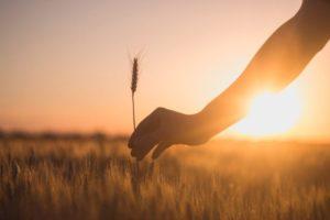 Η θέση μας μέσα στην κοινωνία και η πνευματική βοήθεια προς τα κοντινά μας πρόσωπα