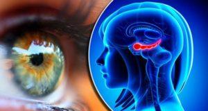 Αλτσχάιμερ: Το σημάδι στα μάτια που μπορεί να αποκαλύπτει το πρόβλημα