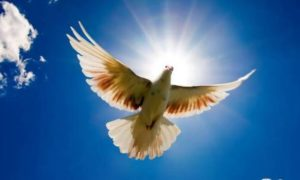 Αγίου Πνεύματος 2019: Όταν έρχεται το Άγιον Πνεύμα, τότε αρχίζεις και βλέπεις!