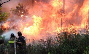 Η Εκκλησία Κύπρου στέλνει χρήματα για τους δοκιμαζόμενους πυρόπληκτους