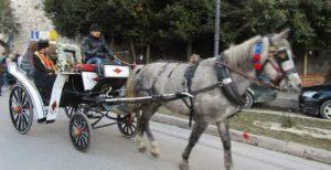 Ιωάννινα: Με άμαξα μεταφέρθηκε η εικόνα του Αη Γιώργη