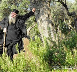 Γέρων Ιερόθεος Καρεώτης (1933 – 25 Απριλίου 2015)