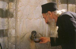 Ιερομόναχος Παύλος Αγιοπαυλίτης (1939 – 20 Ιουνίου 1995)