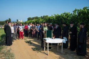 Αγιασμός για τη συγκομιδή των σταφυλιών στη Μονή Χιλιανδαρίου (ΦΩΤΟ)
